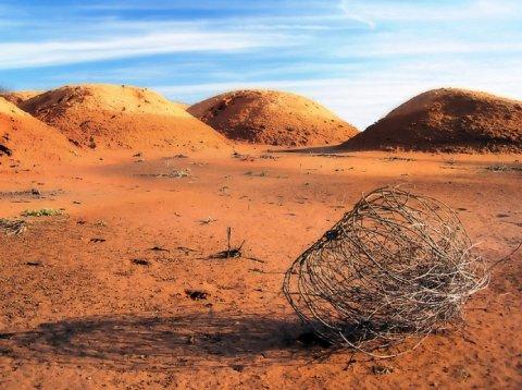 tumbleweed-empty-desert